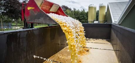 LIVE | Boeren eisen bij rechter compensatie voor fipronilcrisis