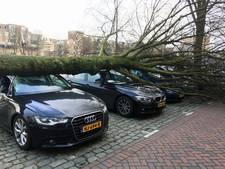 'Stormschade meer dan 10 miljoen euro'