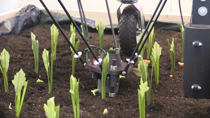 TU Delft bouwt robot die onkruid kan wieden