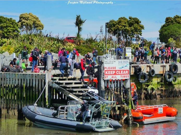 Toeristen worden via de haven van Kaikoura geëvacueerd. Foto Jasper Nijland