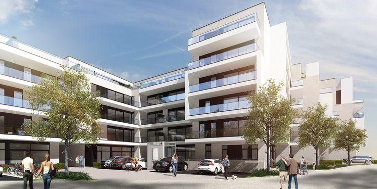 Achteraanzicht van het project 'Devine' op de Vroonhofsite.