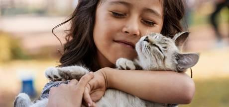 Comment montrer à votre chat que vous l'aimez dans son langage