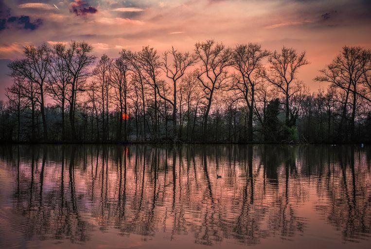 Ondergaande zon aan het donkmeer te Berlare