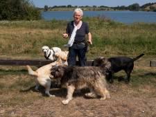 Honden niet meer welkom bij Nedereindse Plas: 'Waar moet ik ze nu uitlaten?'