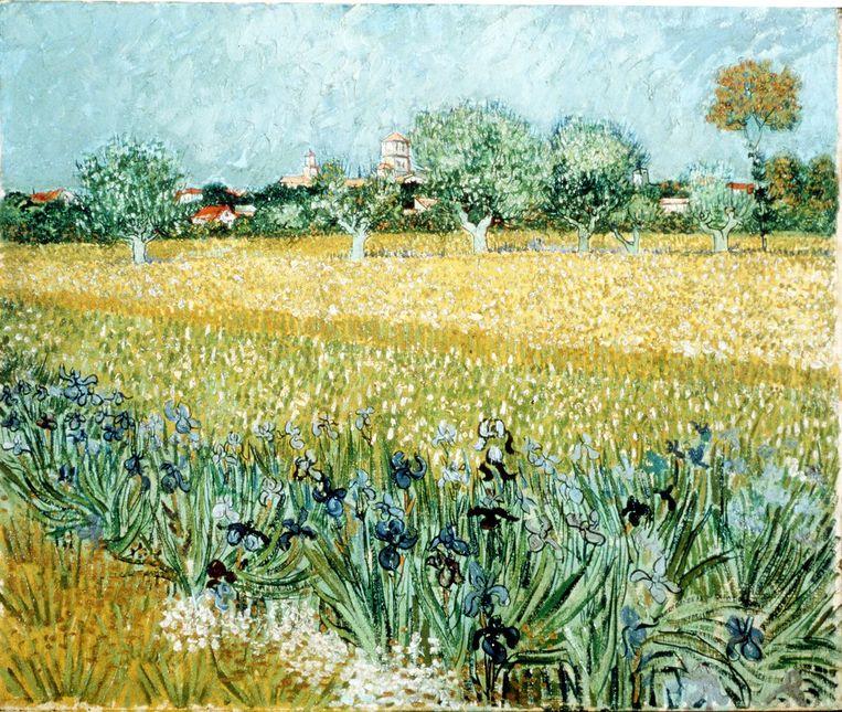 Veld met irissen bij Arles van Van Gogh. Beeld afp