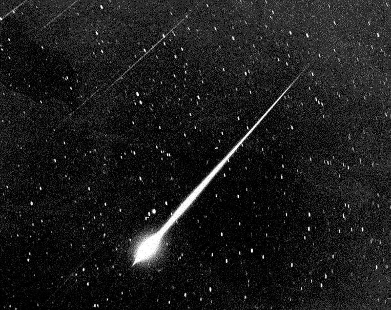 De Leoniden, een meteorenzwerm, vastgelegd bij de ster Sirius. Beeld Hollandse Hoogte / Camera Press Ltd