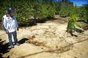 De citroenboomgaard waar de lichamen werden gevonden.