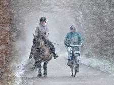 Eindelijk écht winter: witte deken begint Zeeland te bedekken