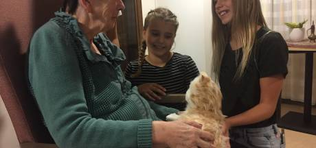 Dewi geeft een robot-kat aan haar demente oma uit Goirle