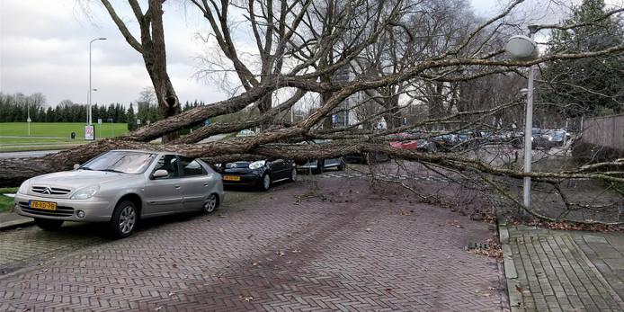 Deze auto op 1e Lieven de Keylaan in Eindhoven is het slachtoffer van de storm