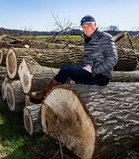 Kaalslag in Gorssel levert boer fikse boete op én hij moet nieuwe bomen planten