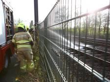 Brandweer rukt uit voor brand op het treinspoor in Nijkerk