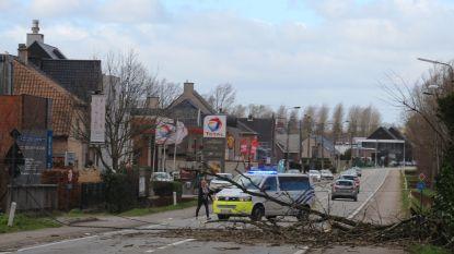 Leedsesteenweg uren afgesloten door afgewaaide takken en afgeknapte elektriciteitskabel