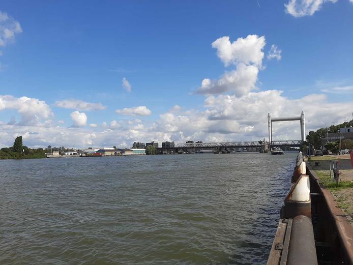 Onder meer langs de kade van de Oude Maas bij de Zwijndrechtse brug werd gezocht met twee boten en speurhonden. Zonder resultaat.
