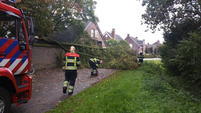 De politie is samen met de brandweer ter plaatse voor een omgewaaide boom in Lith.