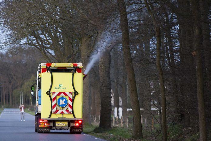 In Twente wordt de eikenprocessierups vooral preventief en biologisch te lijf gegaan.