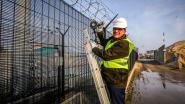 """Haven Oostende test slimme hekken tegen smokkelaars: """"Je raakt er niet ongemerkt over of door"""""""