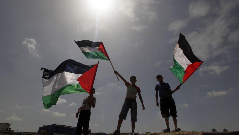 Palestijnse jongens zwaaien met vlaggen. Beeld ap