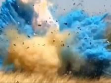 'Babyfeestje' zorgt voor enorme natuurbrand