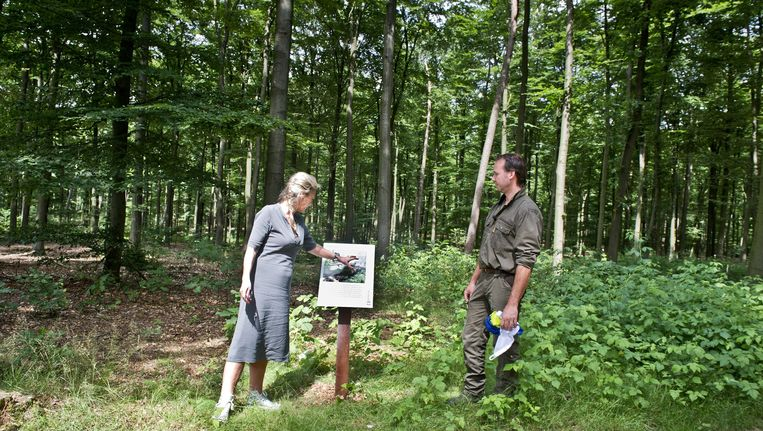Wethouder Ine van Burgsteden en boswachter Jan Floor onthullen het bord dat van De Waterberg officieel een oerbos maakt. Beeld Koen Verheijden