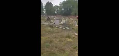 """Mauvaises herbes, troncs d'arbres... Le cimetière de Roux n'est plus entretenu: """"C'est honteux"""""""