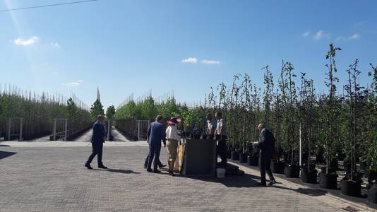 Bij de boomkwekerij in Opheusden.