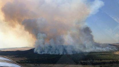 Gevaarlijke week in Australië door recordtemperaturen en hevige bosbranden