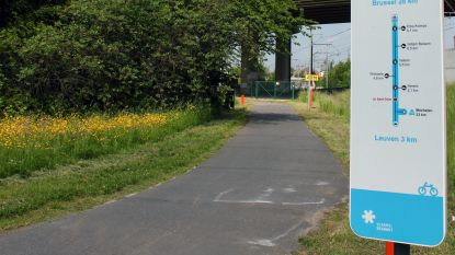Corona zorgt voor stijging van 116% op fietssnelweg F8 in Herent