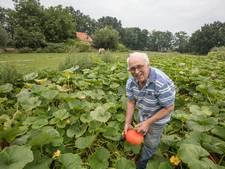 'Groenteboer' Wim Rooijakkers woonde al op Croy vóór het Aarle-Rixtel werd