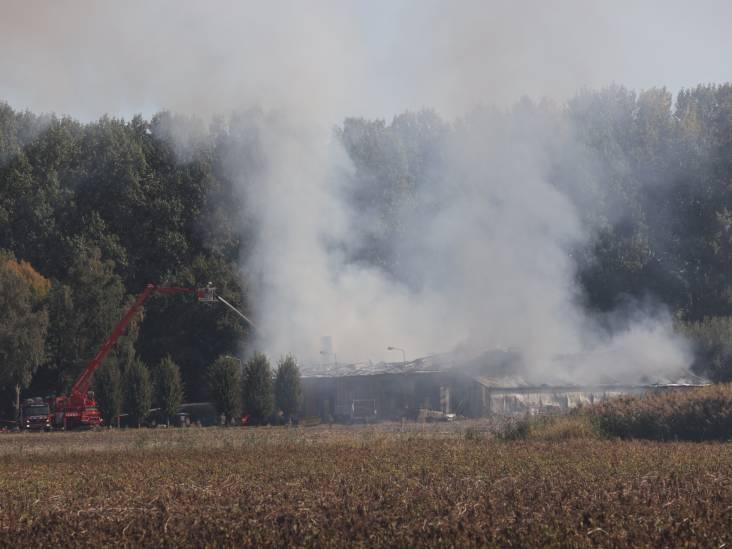 Uitslaande brand bij champignonkwekerij in Sint-Oedenrode