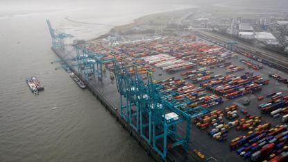112 Slovaakse vrachtwagens in beslag genomen bij actie tegen sociale dumping in Zeebrugge