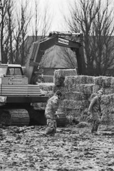 Het Groene Hart in 1983: een bom in Bodegraven