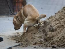 In Korendijk regent het klachten over hondenpoep