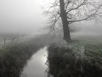 Door de lens van onze fotograaf: de Westhoek in de mist
