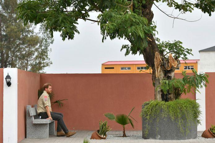 Britain's Prince Harry zit onder de zogeheten Diana Tree in Huambo, Angola