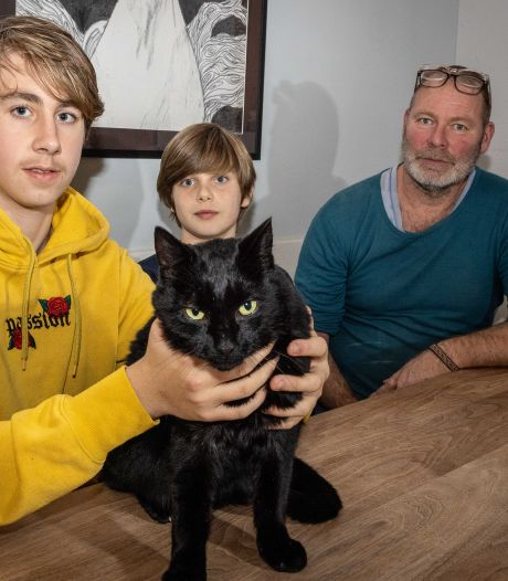 Sam doet ontdekking op eerste stagedag bij dierenasiel: 'Ik dacht dat mijn kat dood was'