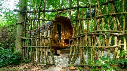 Op zoek naar de perfecte staycation, deel 4. Eén met de natuur: een B&B op het water, in het bos of in de prachtige Netevallei