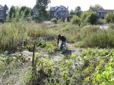 Het verdomhoekje van Goirle: plan na plan sneuvelt