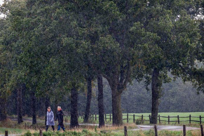 Wandelaars op Landgoed Hemmen, 'het meest onbetuwse plekje dat binnendijks is te vinden'.