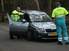 Verdwenen buizerd leidt tot botsing op Braakhekkeweg in Harfsen
