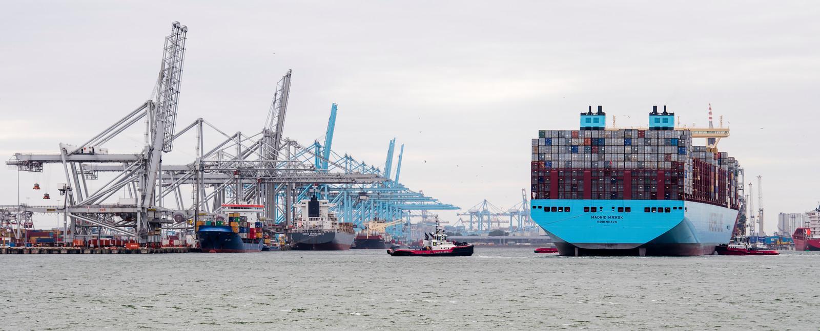 OESO: EU, maak vuist tegen samenwerking grote reders | Foto