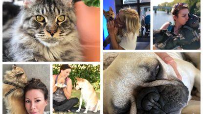 BV's tonen hun favoriete huisgenootje op Werelddierendag