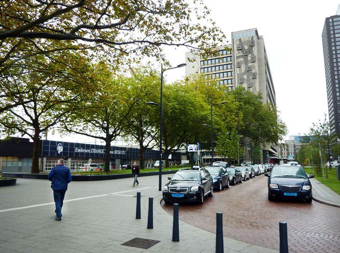 De bomen op het Delftseplein.