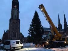 Kerstboom in gereedheid gebracht voor Lichtjesavond