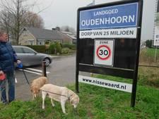 Nissewaard 'vangt' mogelijk miljoenen minder voor Oudenhoorn