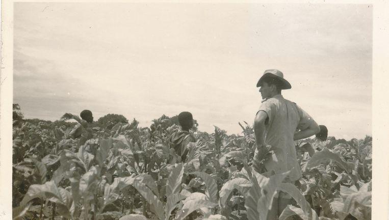 Andere tijden: blanke boeren zonder erf Beeld .