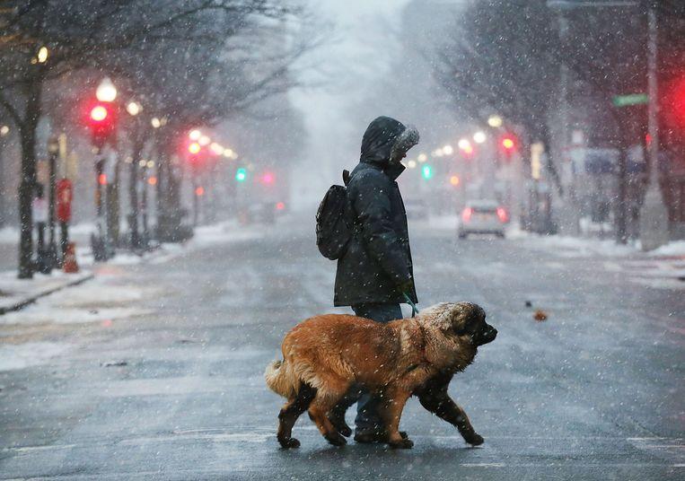 Nauwelijks een mens op de straat in Boston, behalve deze man die z'n hond uitlaat.