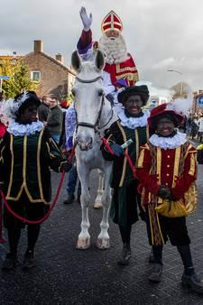 Toch geen roetvegen in Goirle: alle Pieten zijn zwart bij intocht Sinterklaas