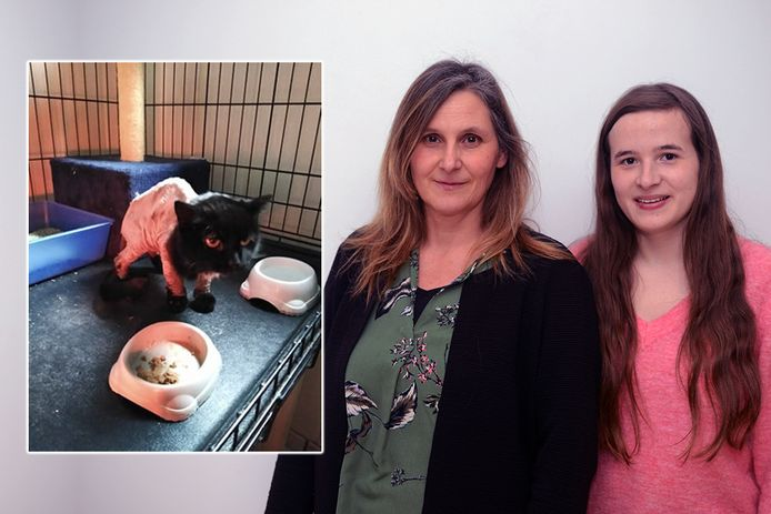 Links katje Laurie, rechts juf Inge en haar dochter Birthe