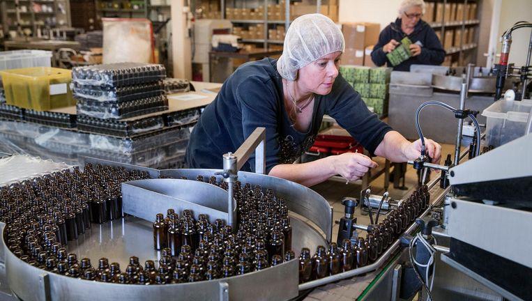 Bij Jacob Hooy, kruidenhandel 'sedert 1743', worden jaarlijks meer dan 100 duizend flesjes met CBD-olie geproduceerd. Een flesje van 100 milliliter kost 95 euro. Beeld Arie Kievit